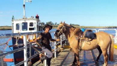Photo of Voy despacio y con tiempo, navegando en mis caballos!!!