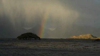 Photo of Ushuaia  –  Cabo de Hornos                        Diario de viaje y navegación